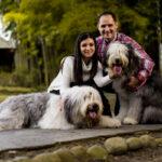 Sesiones de mascotas, sesiones de perros, cuidadores de perros, comida de perro, fotos profesionales, pictures (1)